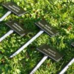 moulded tree stakes 119 x 68mm x 295